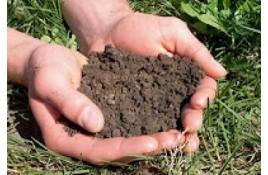 Χώμα: ποιό είναι κατάλληλο για τα φυτά μας;