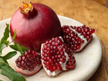 Ροδιά & Καλλιέργεια: όλα όσα πρέπει να γνωρίζετε